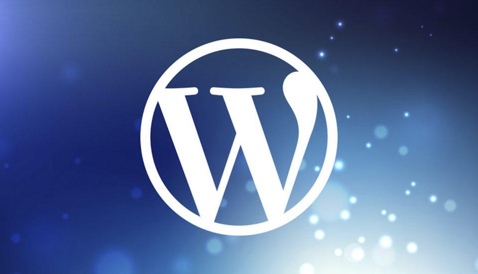 Wordpress Şifre Sıfırlama İşlemi Nasıl Yapılır?